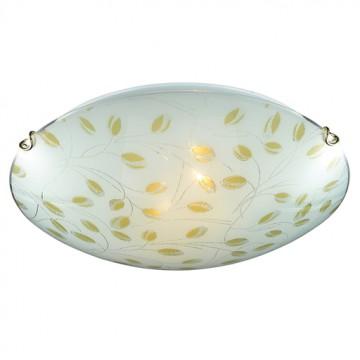 Потолочный светильник Sonex Etra 123/K, 2xE27x60W, золото, желтый, матовый, прозрачный, металл, стекло - миниатюра 4