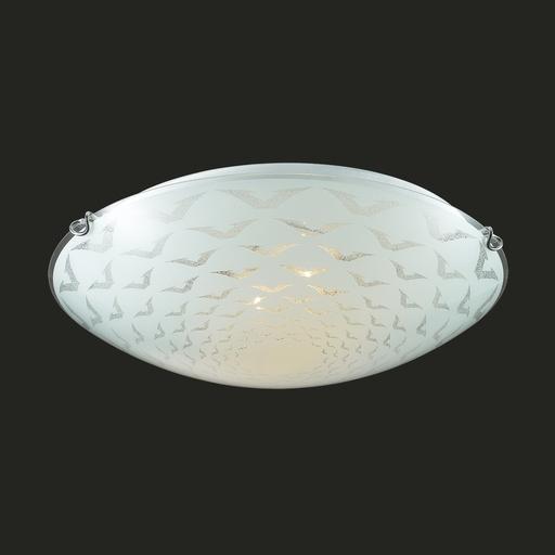 Потолочный светильник Sonex Dori 219, 2xE27x100W, хром, матовый, прозрачный, металл, стекло - фото 4