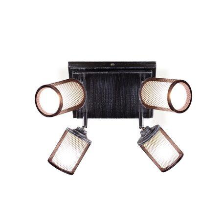 Потолочная люстра с регулировкой направления света Citilux Робин CL535541, 4xE14x60W, черный с серебряной патиной, черно-белый, металл, металл со стеклом