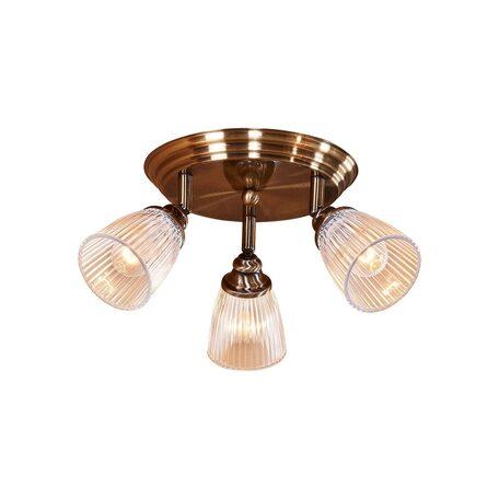 Потолочная люстра с регулировкой направления света Citilux Виндзор CL539631, 3xE14x60W, бронза, белый, металл, стекло