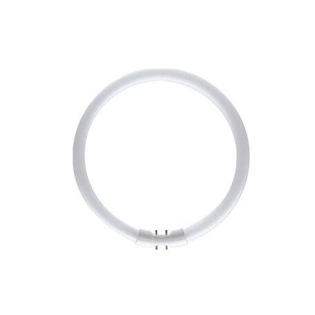 Люминесцентная лампа Astro 6004030 кольцо, гарантия 3 года