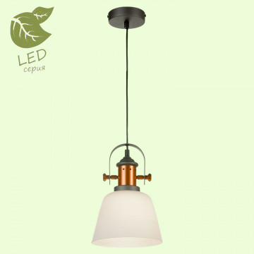 Подвесной светильник Lussole Loft Binghamton GRLSP-9846, IP21, 1xE27x10W, черный, белый, металл, стекло