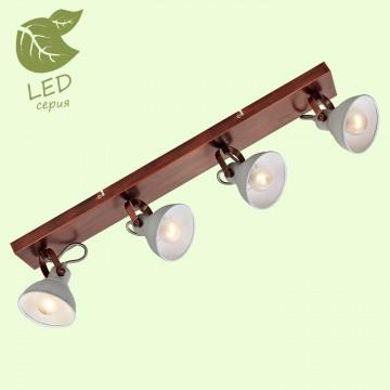 Потолочный светильник с регулировкой направления света Lussole Loft Durango GRLSP-9829, IP21, 4xE14x6W, медь, серый, металл