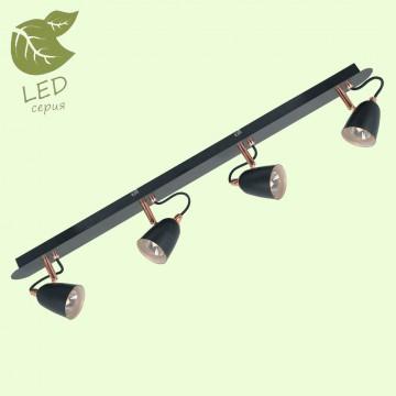 Потолочный светильник с регулировкой направления света Lussole Loft New Frontino GRLSP-9854