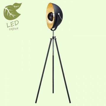 Торшер Lussole Loft Sherrelwood GRLSP-9824, IP21, 1xE27x10W, черный, металл