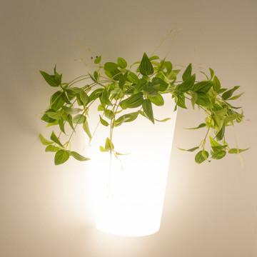 Настенный светильник Mantra Teja 6508, IP54, белый, металл, пластик - миниатюра 5