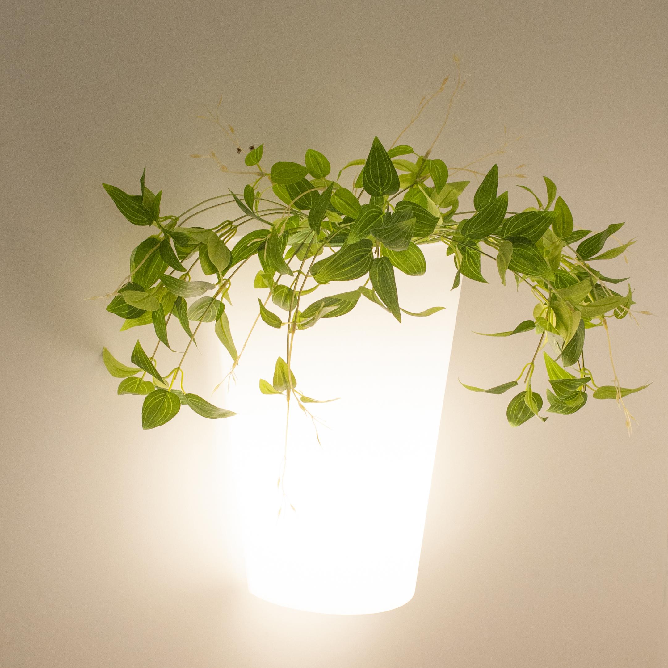 Настенный светильник Mantra Teja 6508, IP54, белый, металл, пластик - фото 5