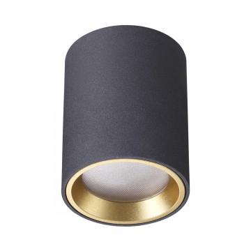 Потолочный светильник Odeon Light Aquana 4205/1C, IP54, 1xGU10x50W