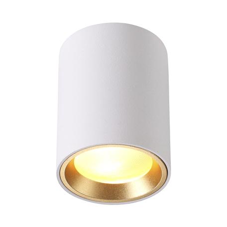 Потолочный светильник Odeon Light Hightech Aquana 4206/1C, IP54, 1xGU10x50W, белый, металл