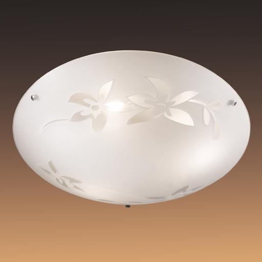 Потолочный светильник Sonex Romana 2214, 2xE27x60W, хром, матовый, прозрачный, металл, стекло - фото 6