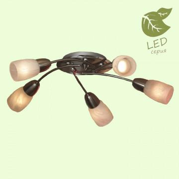 Потолочная люстра Lussole Cevedale GRLSQ-6907-05, IP21, 5xE14x7W, никель, белый, металл, стекло