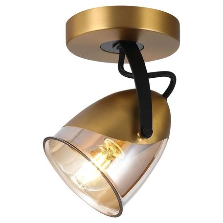 Потолочный светильник Lussole Loft Antelope LSP-8422, IP21