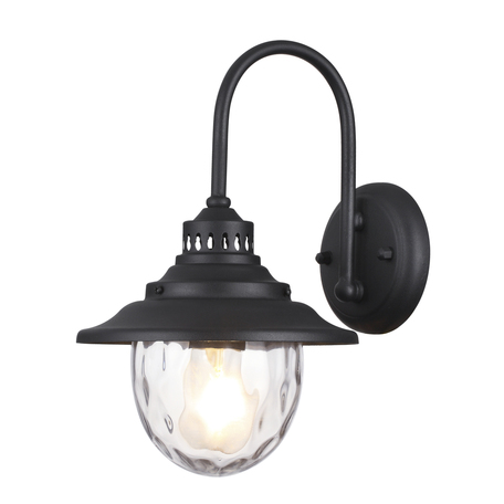Настенный светильник Odeon Light Nature Kalpi 4836/1W, IP44, 1xE27x60W, черный, прозрачный, металл, стекло