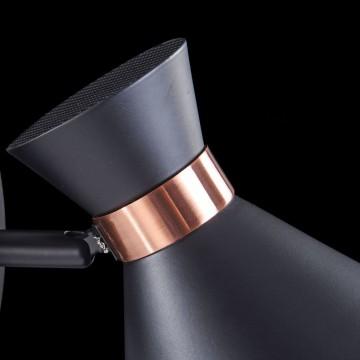 Настенный светильник с регулировкой направления света Freya Izzy FR4273-WL-01-B, 1xE14x40W, черный, медь, металл - миниатюра 7