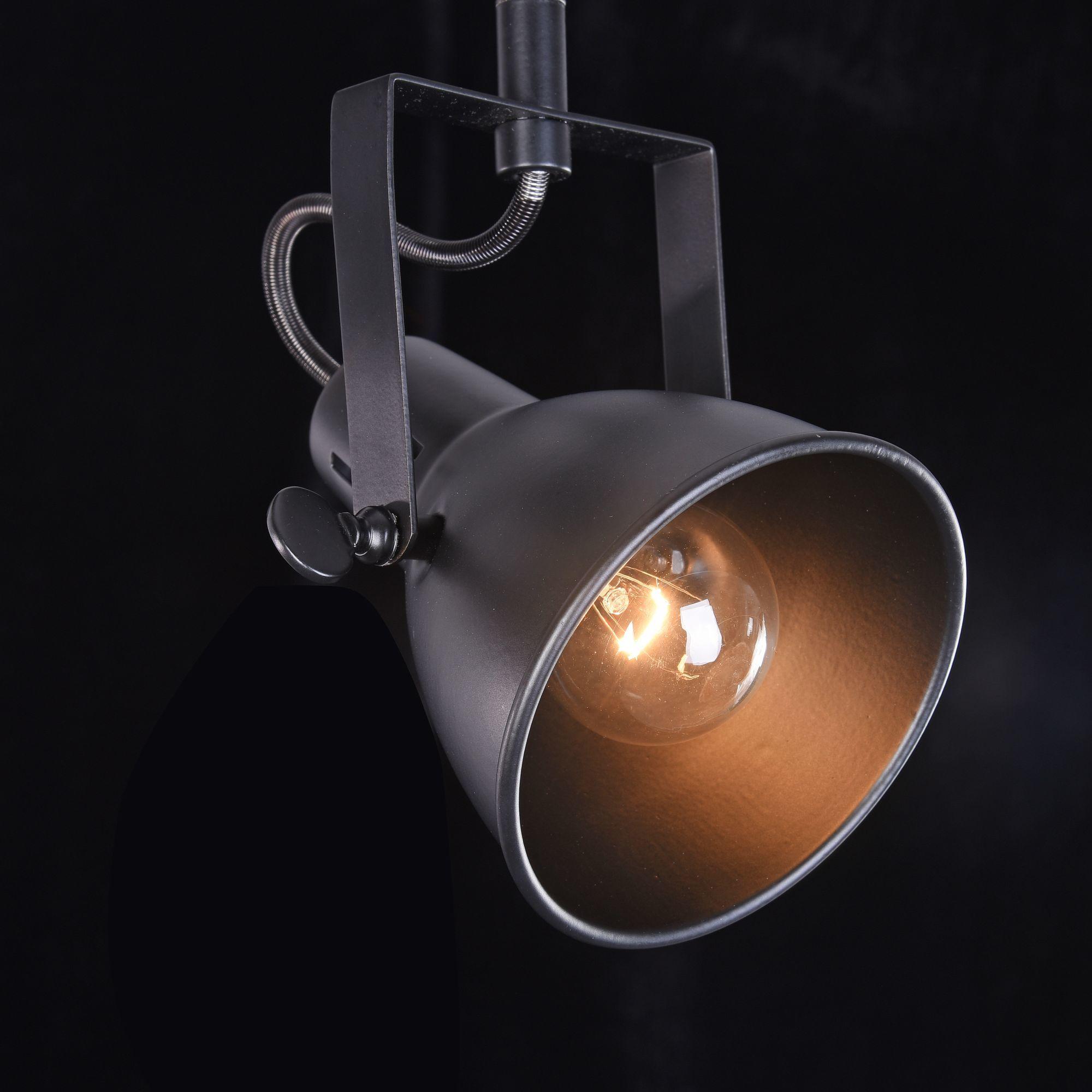 Потолочный светильник с регулировкой направления света Freya Ibbi FR4276-CW-02-B, 2xE14x40W, черный, металл - фото 3