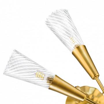 Бра Lightstar Aereo 711621, 2xG9x25W, матовое золото, прозрачный, металл, стекло, хрусталь - миниатюра 2