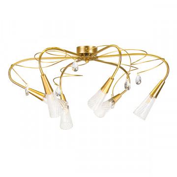 Потолочная люстра Lightstar Aereo 711061, 6xG9x25W, матовое золото, прозрачный, металл, стекло, хрусталь