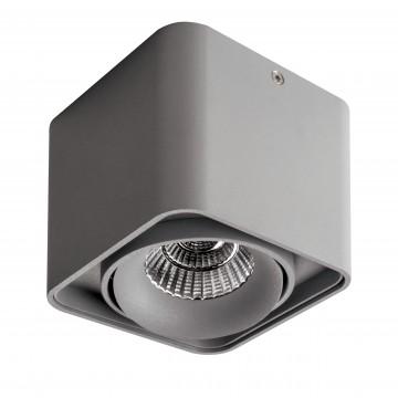 Потолочный светодиодный светильник Lightstar Monocco 052119, IP65, LED 10W, 4000K (дневной), серый, металл