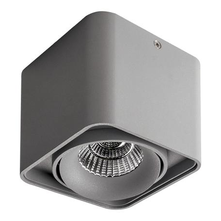 Потолочный светодиодный светильник Lightstar Monocco 052119, IP65, LED 10W 4000K 600lm, серый, металл