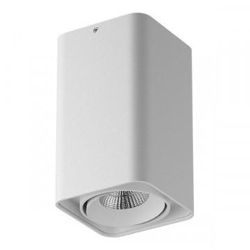 Потолочный светодиодный светильник Lightstar Monocco 052136, IP65, LED 10W 4000K 600lm, белый, металл