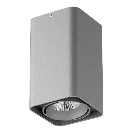 Потолочный светодиодный светильник Lightstar Monocco 052139, IP65, LED 10W 4000K 600lm, серый, металл