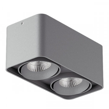 Потолочный светильник Lightstar Monocco 212529, 2xGU10x50W, серый, металл