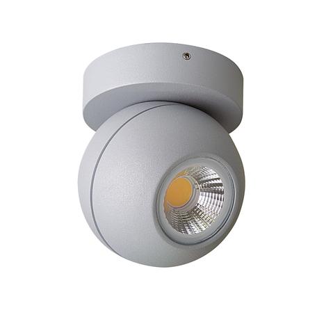 Потолочный светодиодный светильник с регулировкой направления света Lightstar Globo 051009, IP65, LED 8W 3000K, серый, прозрачный, металл