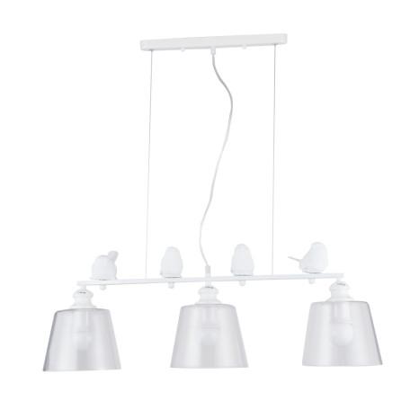 Подвесной светильник Arte Lamp Passero A4289SP-3WH, 3xE27x40W, белый, прозрачный, металл со стеклом/пластиком, стекло
