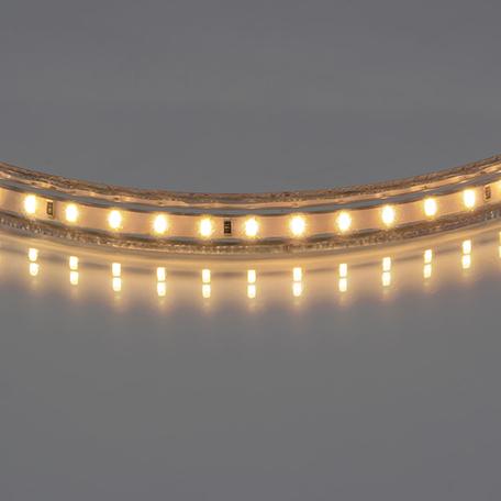 Светодиодная лента Lightstar LED Strip 402032 IP65 220V диммируемая гарантия 1 год