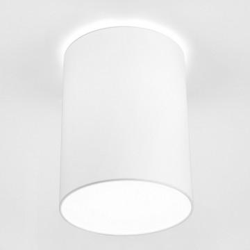 Потолочный светильник Nowodvorski Cameron 9685, 1xE27x25W, белый, металл, текстиль