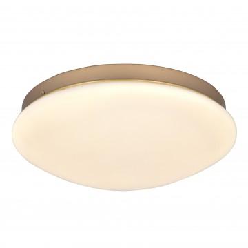 Потолочный светодиодный светильник Favourite F-Promo Ledante 2466-2C, LED 24W 4000K (дневной)