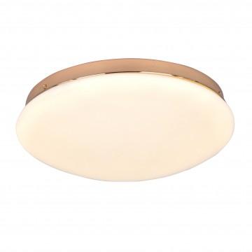 Потолочный светодиодный светильник Favourite F-Promo Ledante 2465-2C, LED 24W 4000K (дневной)