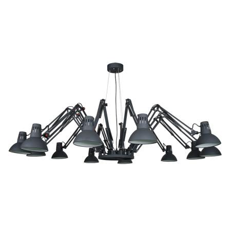Подвесная люстра с регулировкой направления света Arte Lamp Ragno A2043SP-12BK, 12xE27x40W, черный, металл