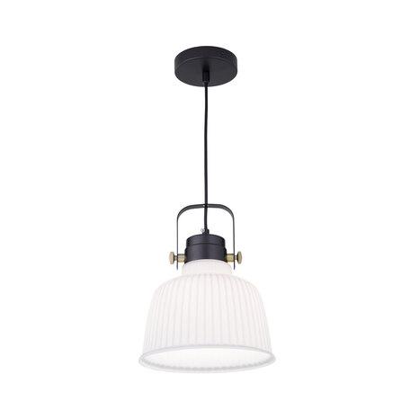 Подвесной светильник с регулировкой направления света Citilux Спенсер CL448112, 1xE27x75W, черный, белый, металл, стекло