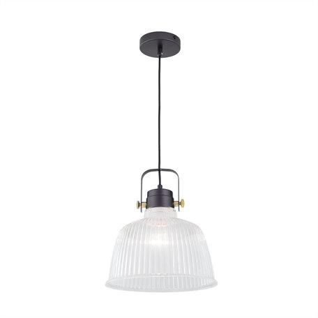Подвесной светильник с регулировкой направления света Citilux Спенсер CL448211, 1xE27x75W, черный, белый, металл, стекло