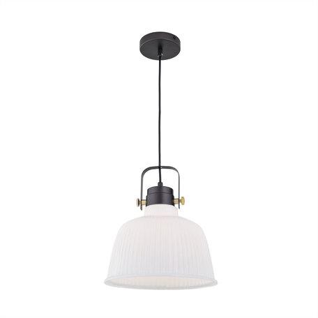 Подвесной светильник с регулировкой направления света Citilux Спенсер CL448212, 1xE27x75W, черный, белый, металл, стекло