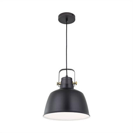 Подвесной светильник с регулировкой направления света Citilux Спенсер CL448213, 1xE27x75W, черный, металл