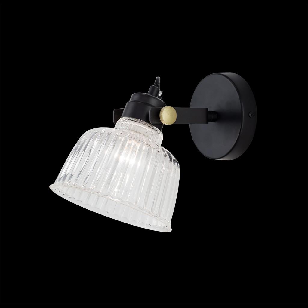 Потолочный светильник с регулировкой направления света Citilux Спенсер CL448311, 1xE14x60W, черный, белый, металл, стекло - фото 2