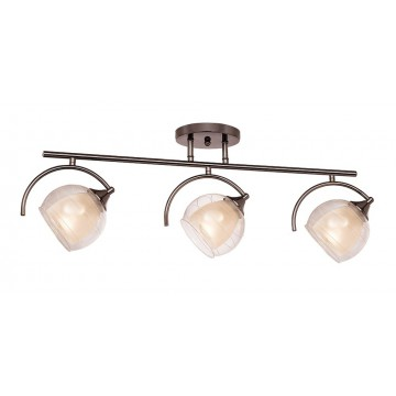 Потолочный светильник Silver Light Sfera 255.59.3