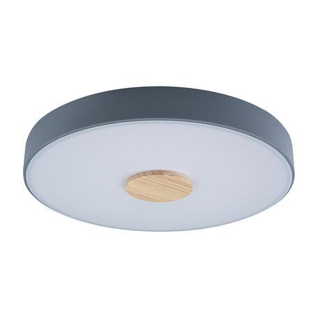 Потолочный светодиодный светильник Loft It Axel 10003/24 Grey, LED 24W 4000K, коричневый, серый, металл, пластик