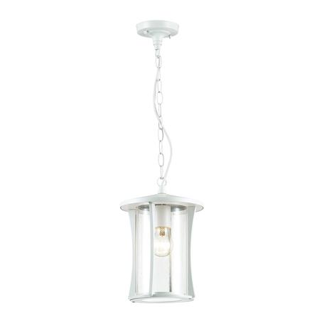 Подвесной светильник Odeon Light Nature Galen 4173/1, IP33, 1xE27x40W, белый, прозрачный с белым, белый с прозрачным, металл, металл со стеклом