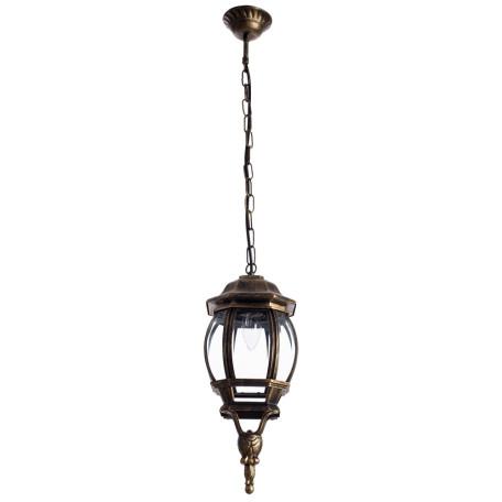 Подвесной светильник Arte Lamp Atlanta A1045SO-1BN, IP21, 1xE27x75W, черненое золото, прозрачный, черный с золотой патиной, металл, ковка, металл со стеклом