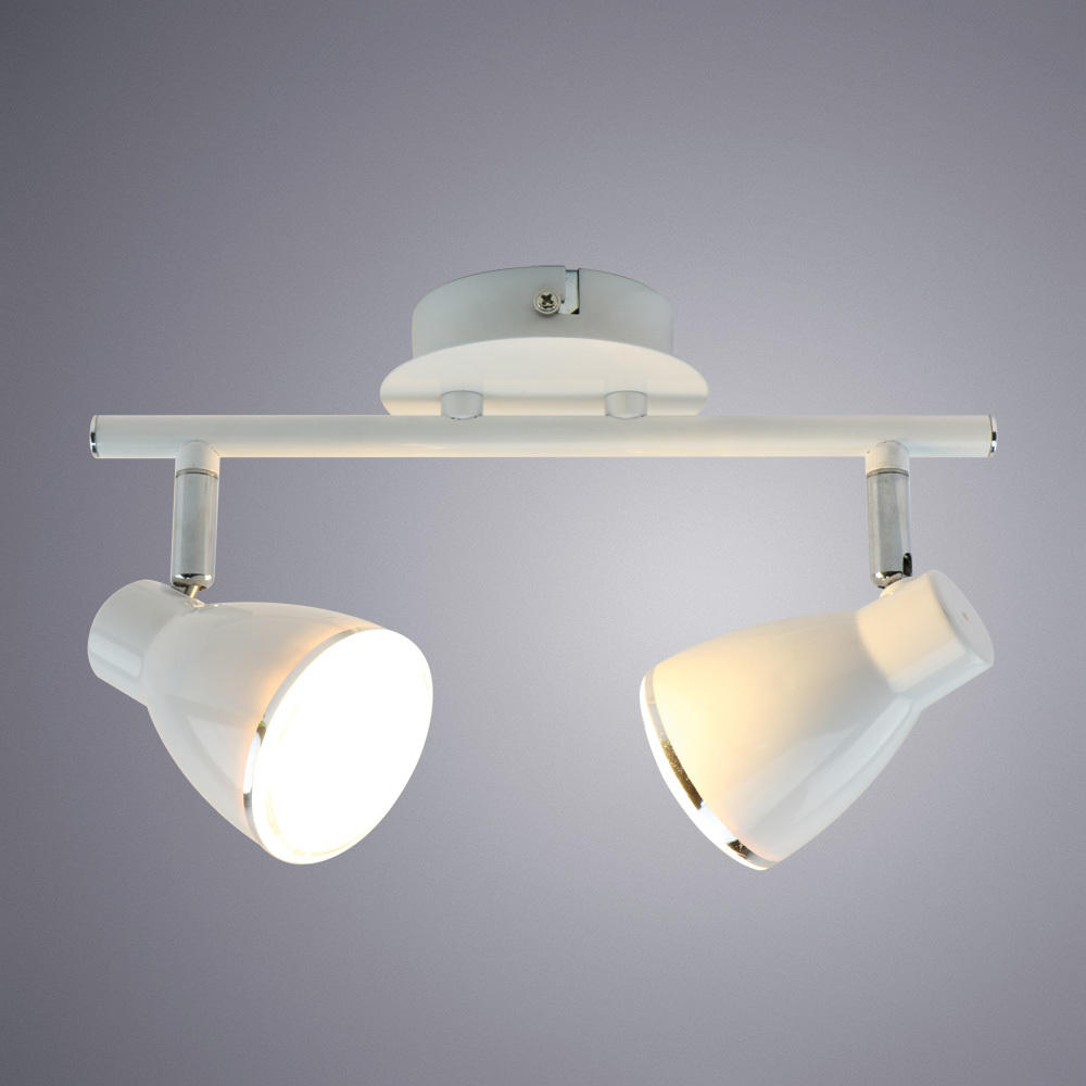 Потолочный светодиодный светильник с регулировкой направления света Arte Lamp Gioved A6008PL-2WH, LED 10W 3000K (теплый), белый, металл - фото 1