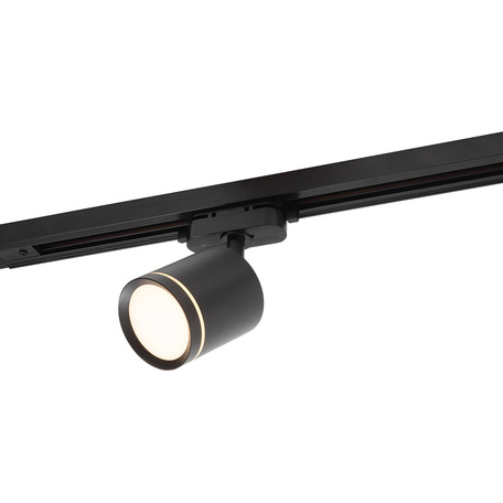 Светодиодный светильник с регулировкой направления света для шинной системы Denkirs DK6401-BK, LED 9W, черный, металл