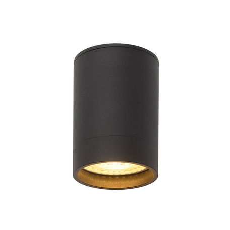 Потолочный светильник Denkirs DK2000 DK2050-BK, 1xGU10x50W, черный, металл