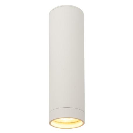 Потолочный светильник Denkirs DK2000 DK2052-WH, 1xGU10x50W, белый, металл