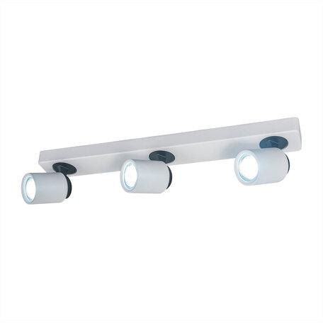 Потолочный светильник с регулировкой направления света Citilux Норман CL533530