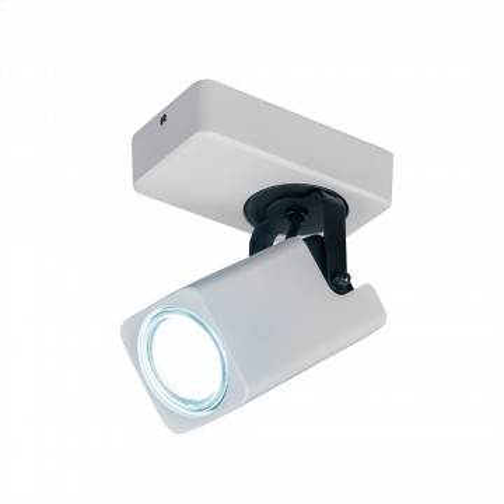 Потолочный светильник с регулировкой направления света Citilux Норман CL533610