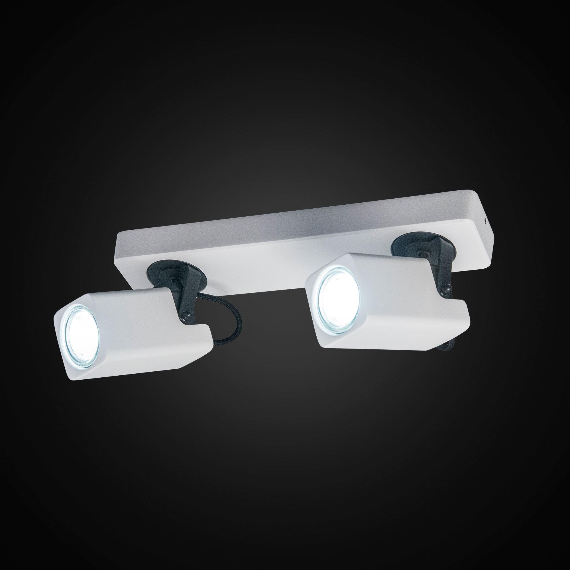 Потолочный светильник с регулировкой направления света Citilux Норман CL533620, 2xGU10x50W - фото 2