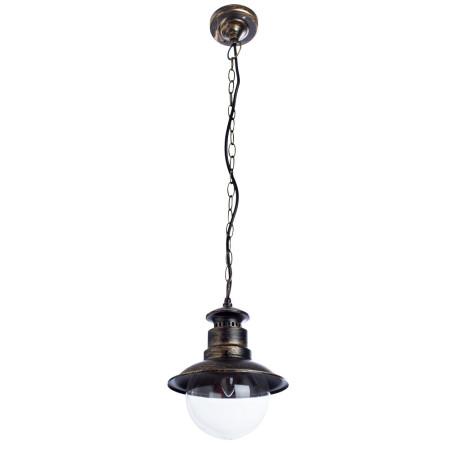 Подвесной светильник Arte Lamp Amsterdam A1523SO-1BN, IP44, 1xE27x60W, черненое золото, прозрачный, черный с золотой патиной, металл, металл со стеклом
